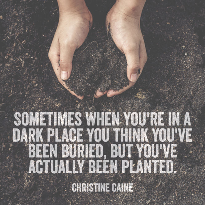 Sometimes when you're planted in a dark place you think you've been buried