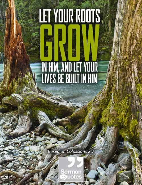 let-your-roots-grow-in-him