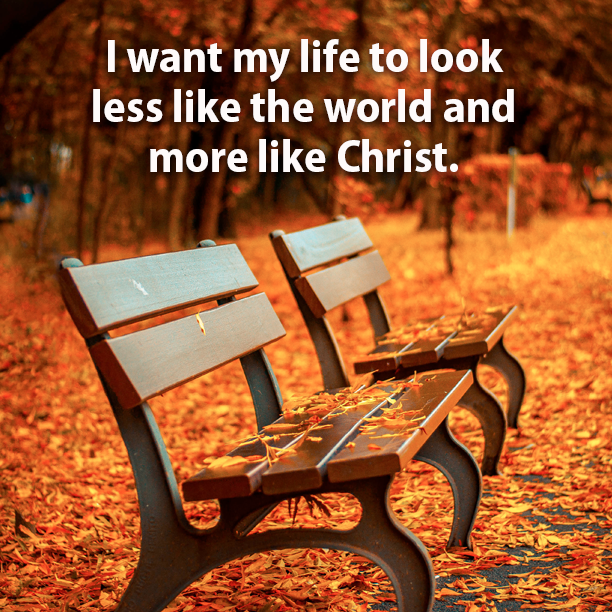 I want my life to look